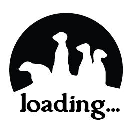 Loading Content..